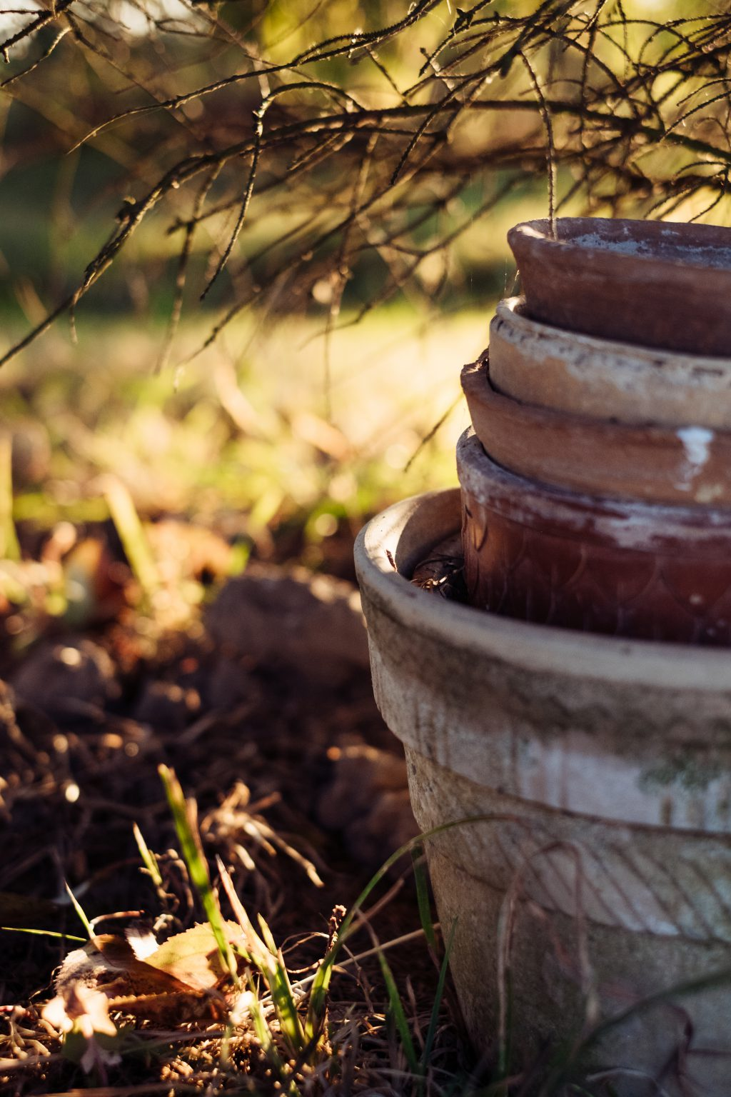 Old clay flower pots 2 - free stock photo