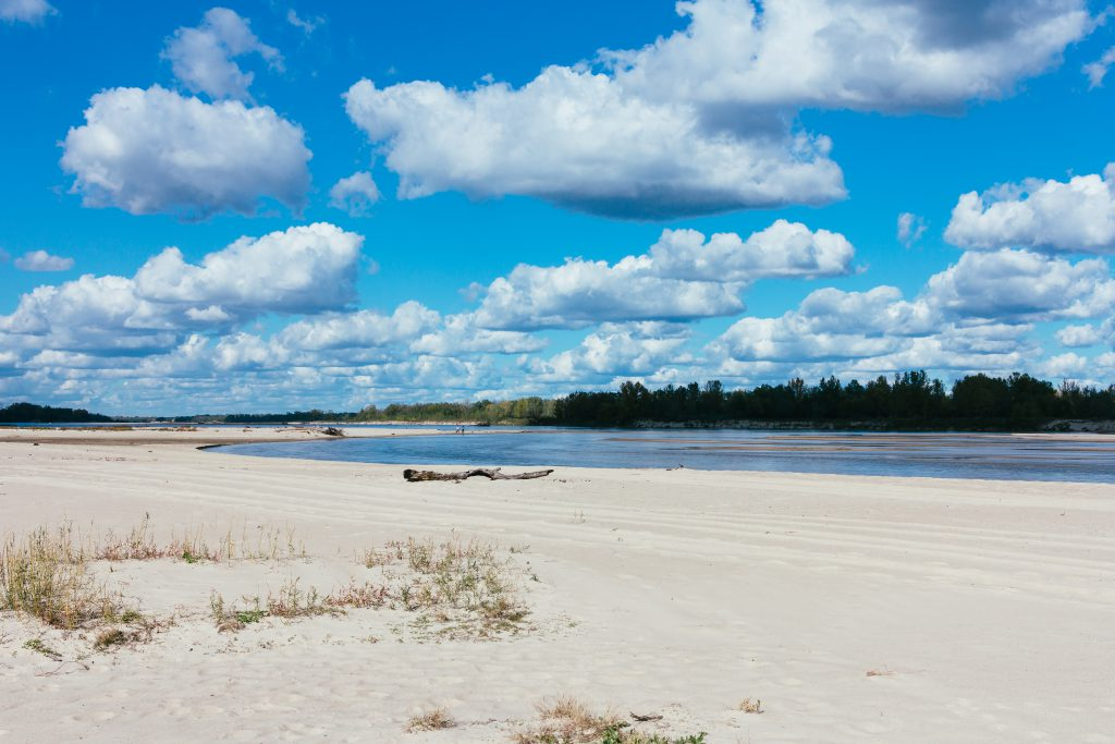 Sandy beach at the river - free stock photo