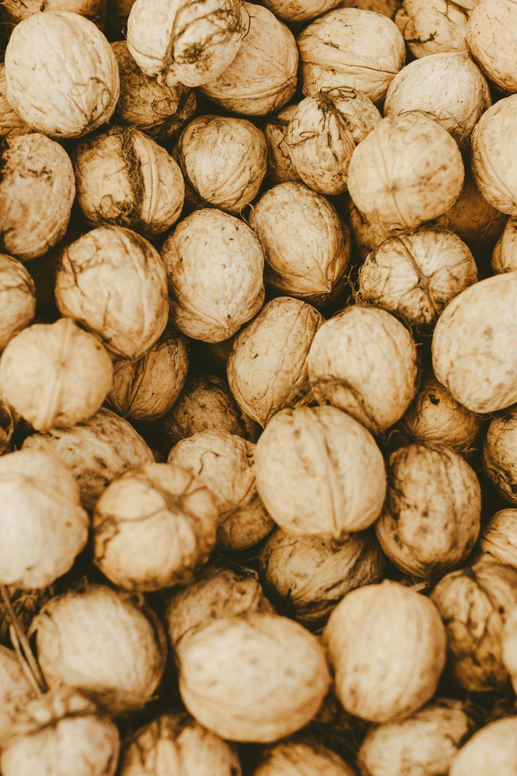 Many walnuts - free stock photo