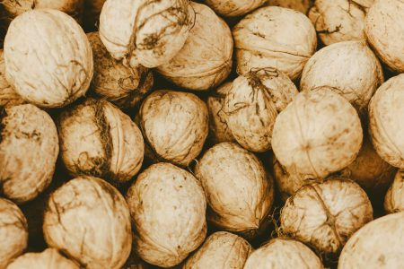 Many walnuts - free stock photo