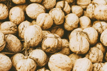 Many walnuts 2 - free stock photo