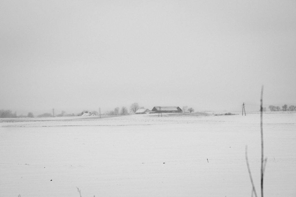 Foggy winter day in the field in black and white - free stock photo