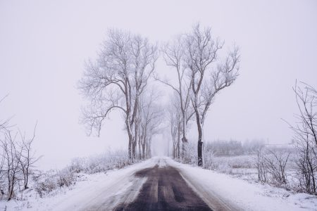 Snow covered road 2 - free stock photo