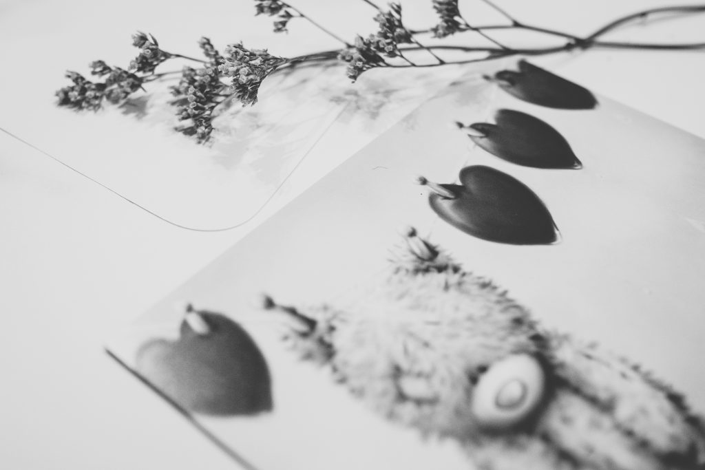 Valentines card with teddy bear in black and white - free stock photo
