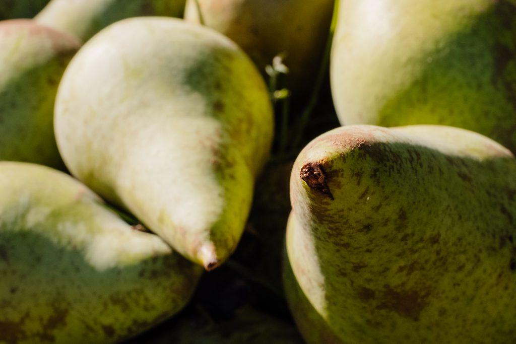 Pears closeup - free stock photo