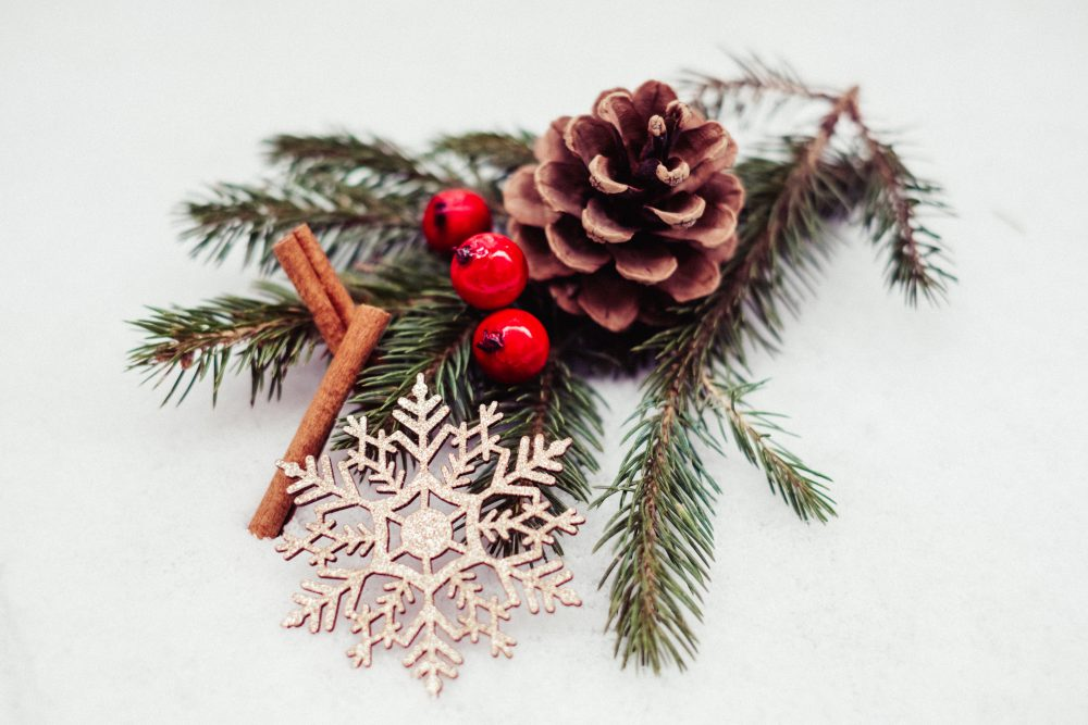 Christmas spruce decoration - free stock photo