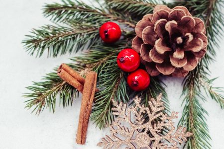 Christmas spruce decoration 3 - free stock photo