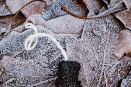 Felted snowman on frosted leaves - free stock photo