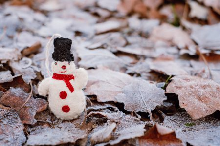 Felted snowman on frosted leaves 4 - free stock photo
