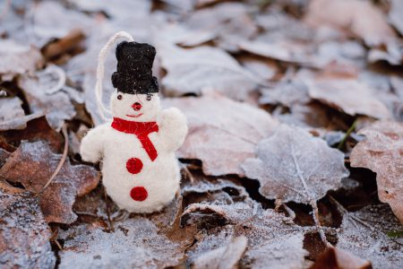 Felted snowman on frosted leaves 6 - free stock photo