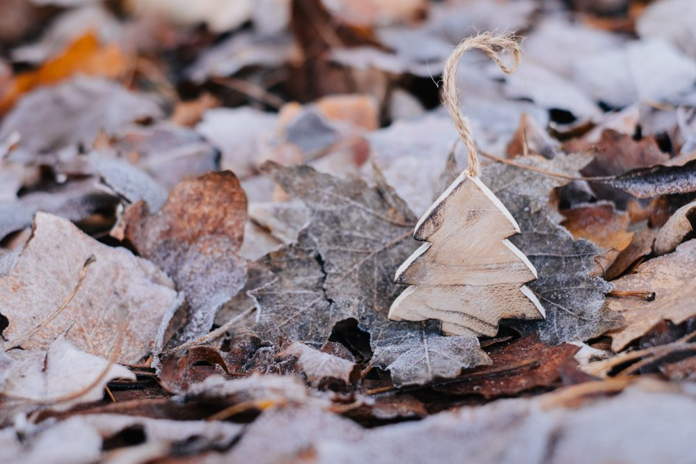 Wooden Christmas tree on frosted leaves 3 - free stock photo