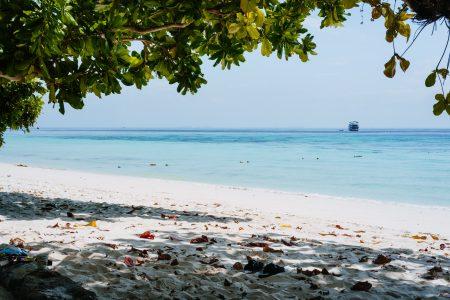A sandy beach in Thailand 4 - free stock photo