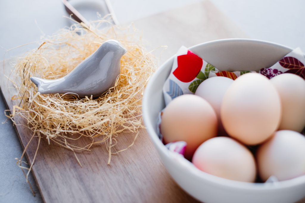 Ceramic bird in a nest and plain eggs 2 - free stock photo