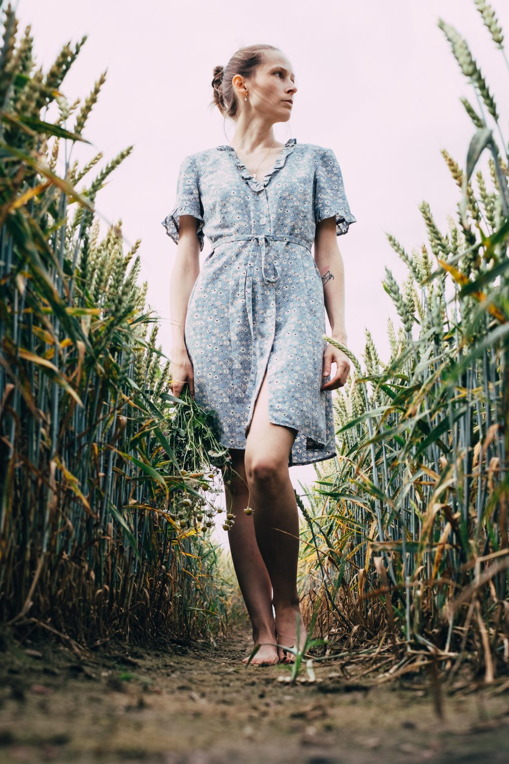 Girl standing in a triticale field - free stock photo