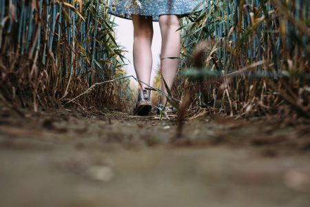 Girl standing in a triticale field 4 - free stock photo
