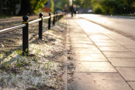 Pollen flying in the street 2 - free stock photo