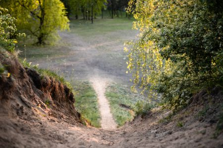 Steep bicycle trail in the park - free stock photo