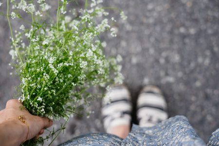 Wild flowers bouquet in a female hand 6 - free stock photo