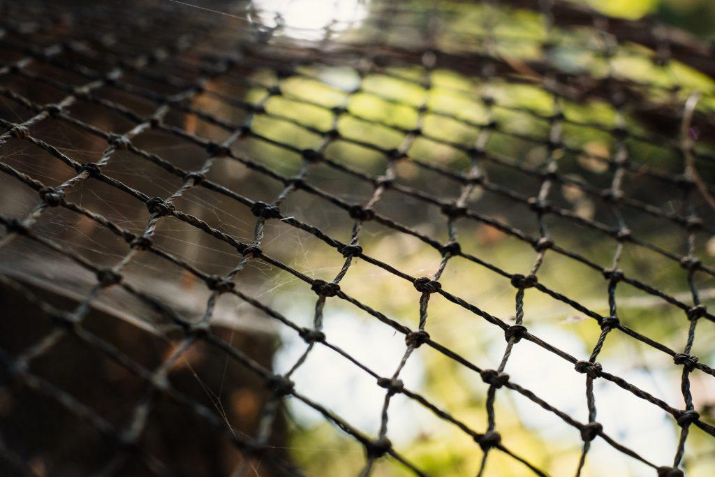 Fish net closeup - free stock photo