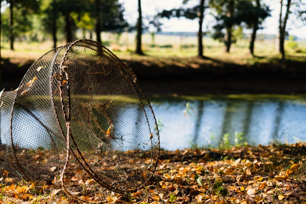 Fish net at the pond - free stock photo