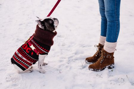 A female with a french bulldog out in the snow - free stock photo