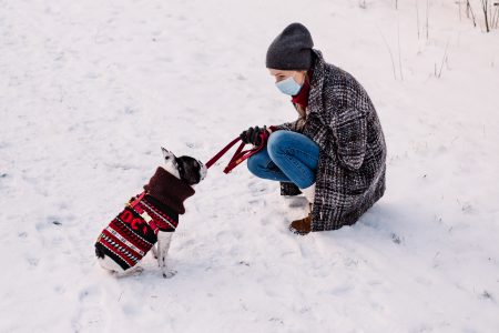 A female with a french bulldog out in the snow 3 - free stock photo