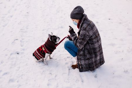 A female with a french bulldog out in the snow 4 - free stock photo
