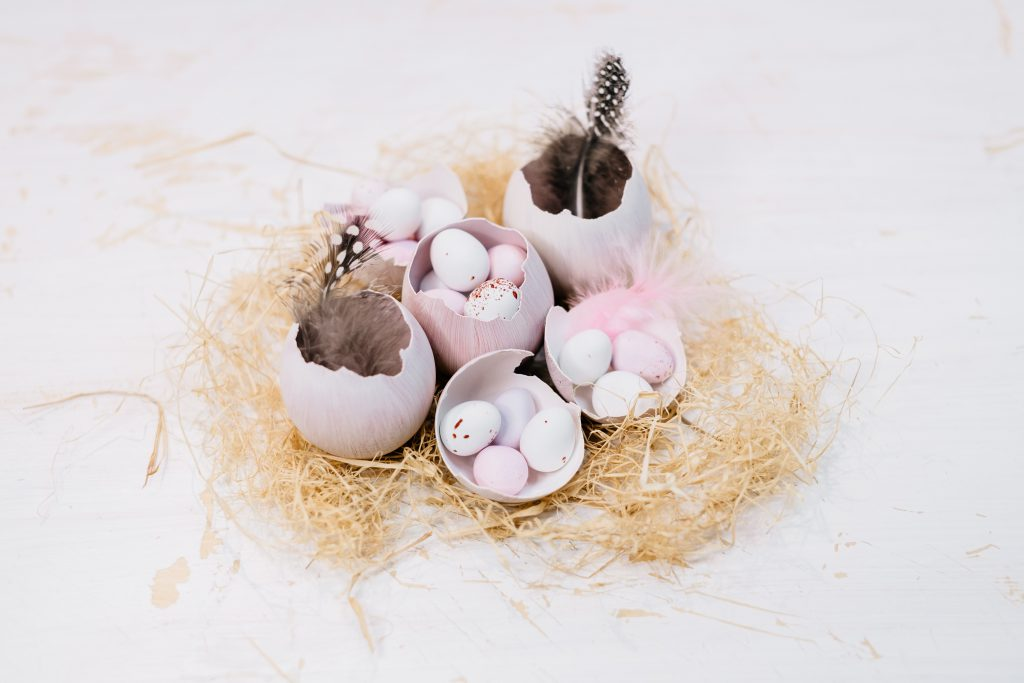 Egg shells Easter table decoration - free stock photo