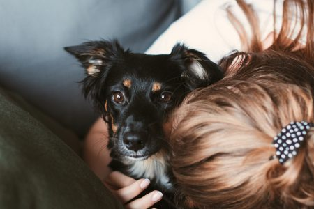 Girl hugging her dog - free stock photo