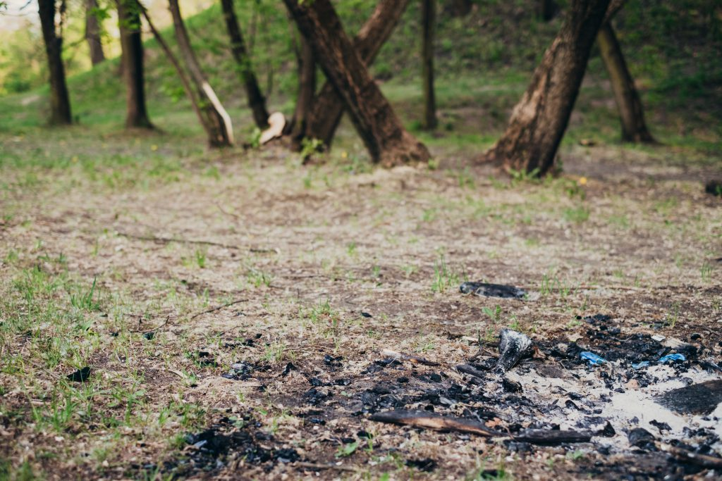 Bonfire wood ash in the park - free stock photo