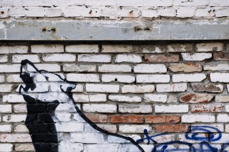 Graffiti of a wolf on a brick wall - free stock photo