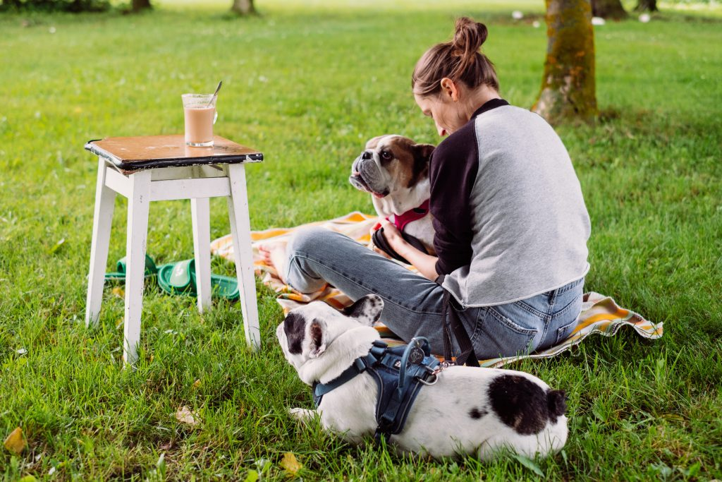 Female having a coffee outdoors with dogs - free stock photo