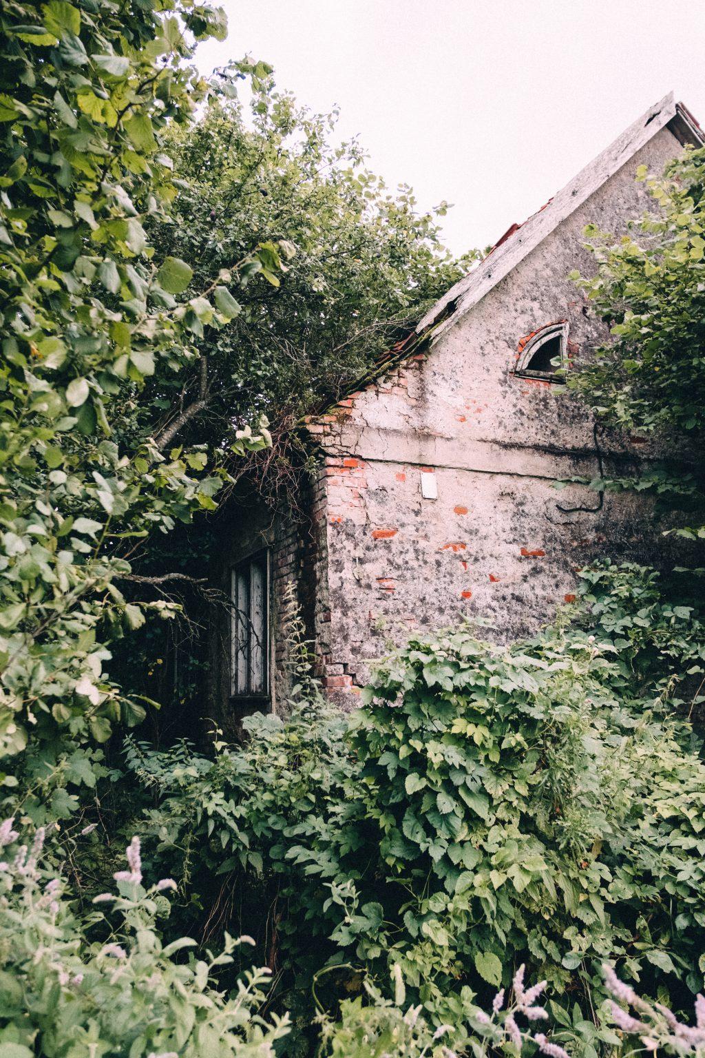 Abandoned ruined house 5 - free stock photo