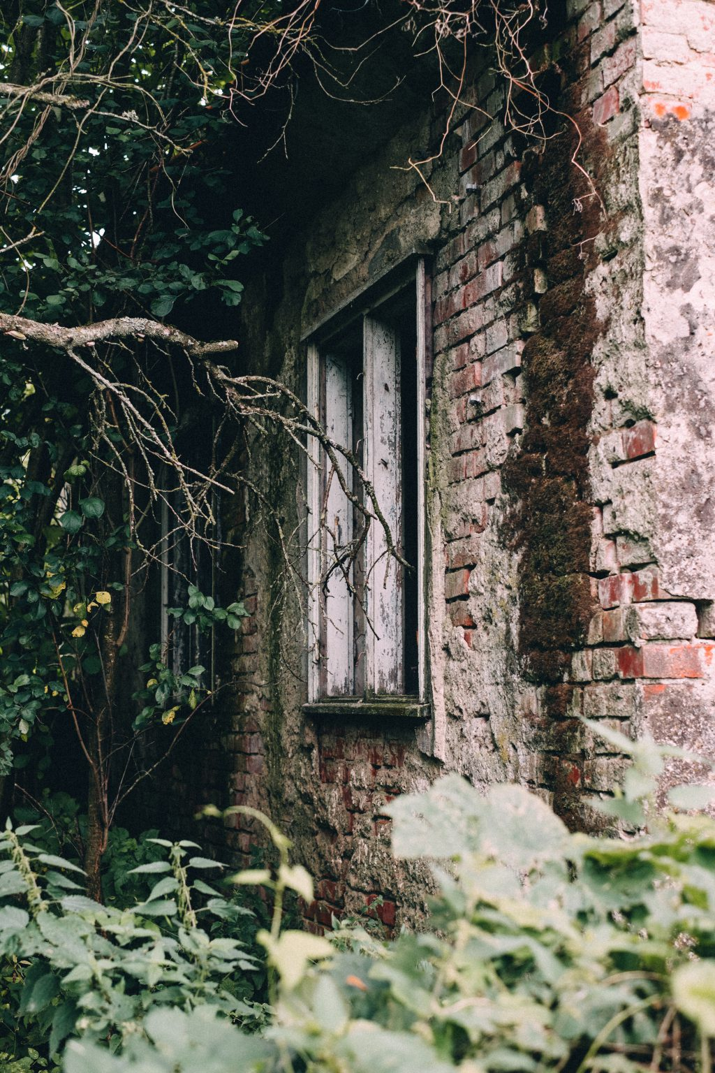 Abandoned ruined house 7 - free stock photo