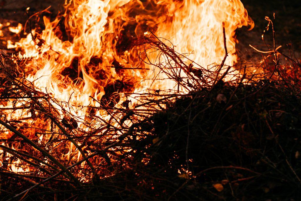 Bonfire flames - free stock photo