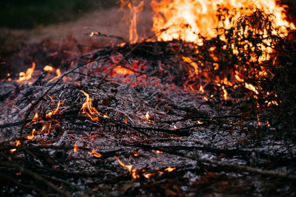 Bonfire flames and ashes - free stock photo