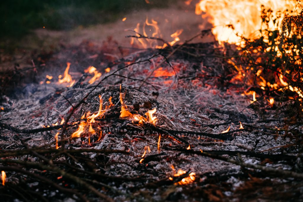 Bonfire flames and ashes 2 - free stock photo