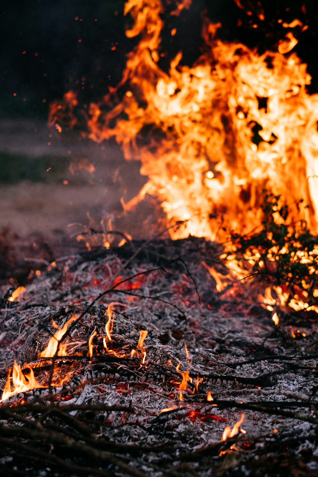 Bonfire flames and ashes 3 - free stock photo