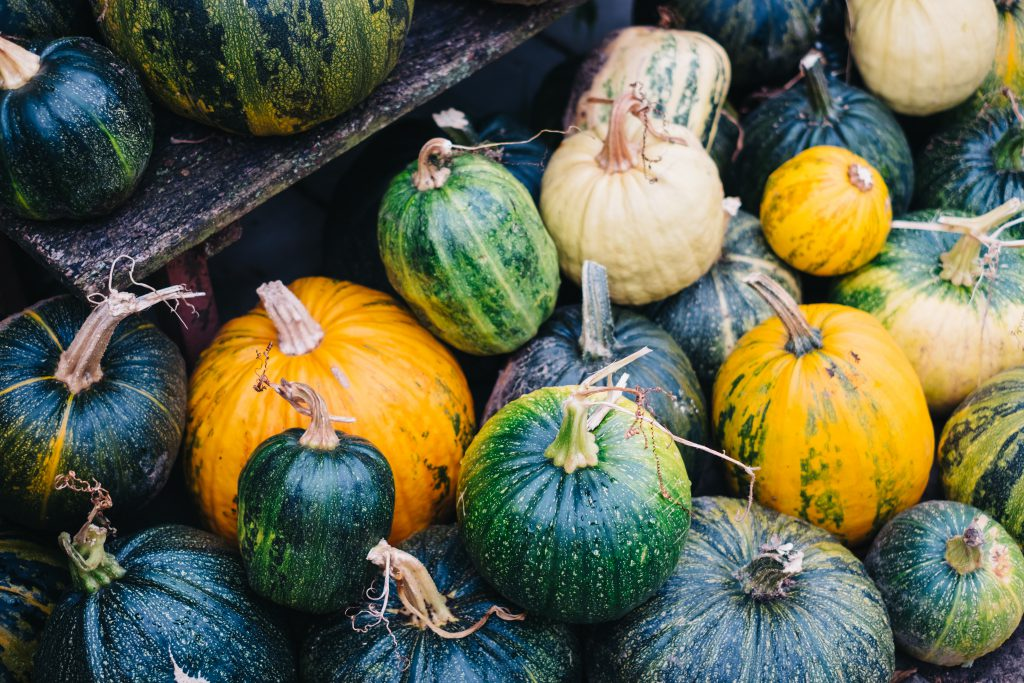 A pile of green and yellow pumpkins - free stock photo