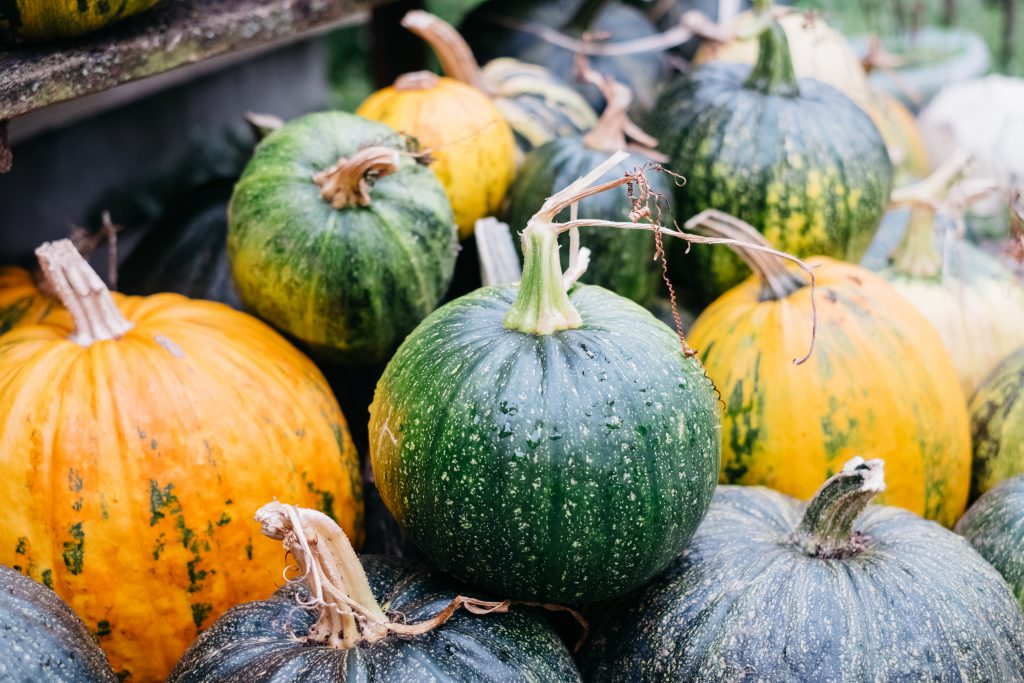 A pile of green and yellow pumpkins 2 - free stock photo
