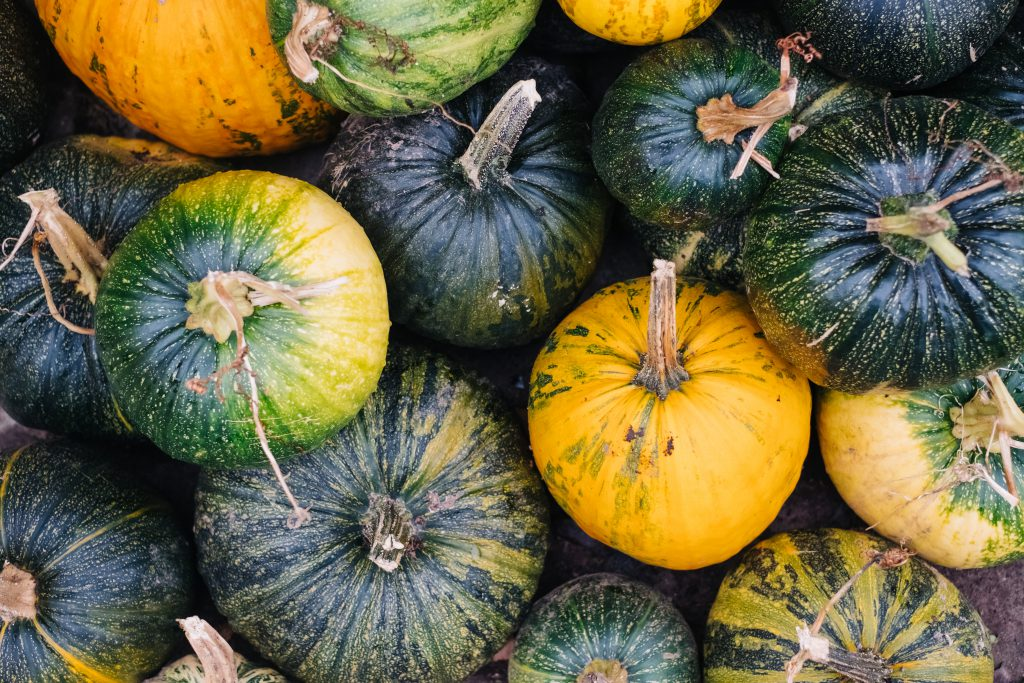 A pile of green and yellow pumpkins 3 - free stock photo