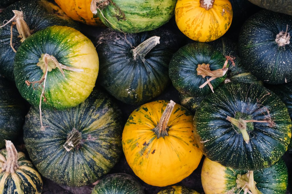 A pile of green and yellow pumpkins 4 - free stock photo