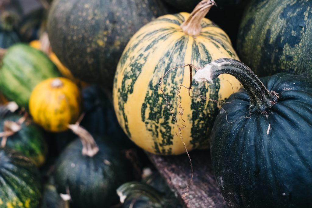 A pile of green and yellow pumpkins closeup - free stock photo