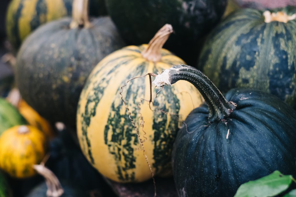 A pile of green and yellow pumpkins closeup 2 - free stock photo