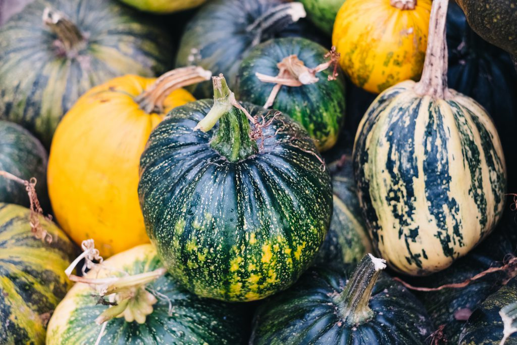 A pile of green and yellow pumpkins closeup 3 - free stock photo