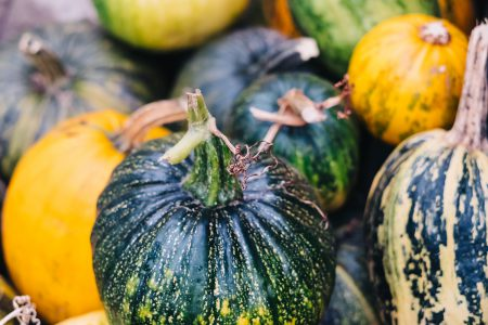 A pile of green and yellow pumpkins closeup 4 - free stock photo