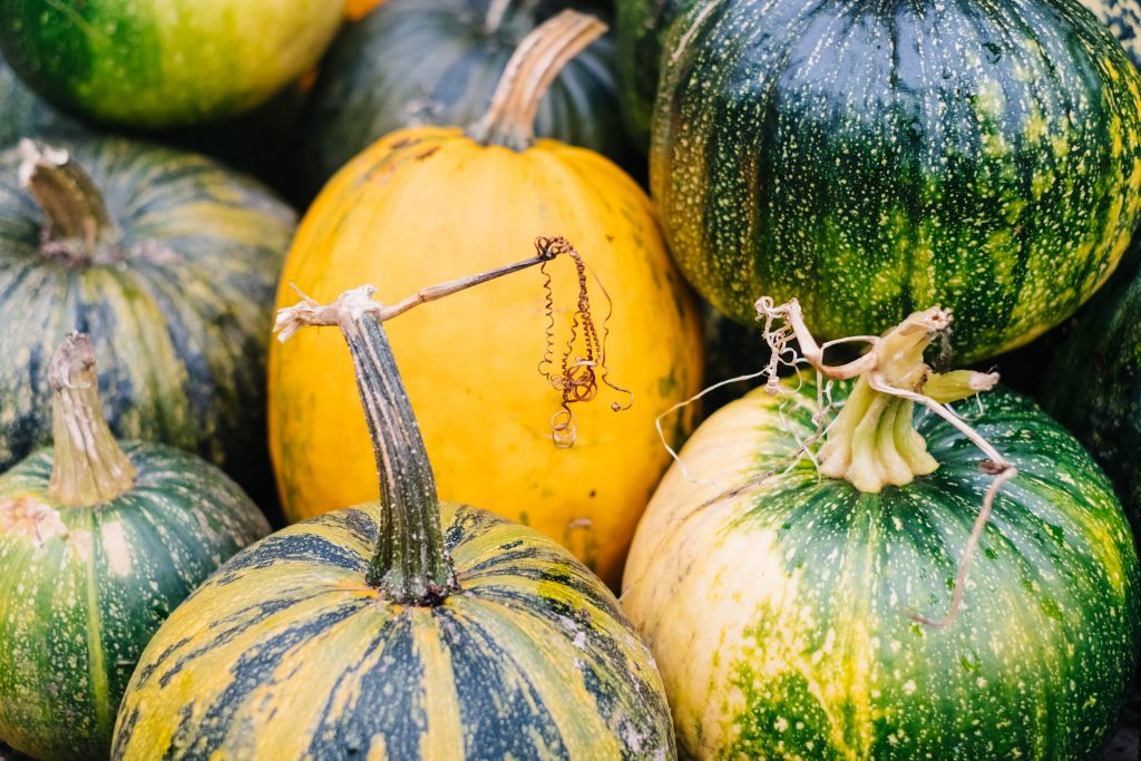 A pile of green and yellow pumpkins closeup 5 - free stock photo
