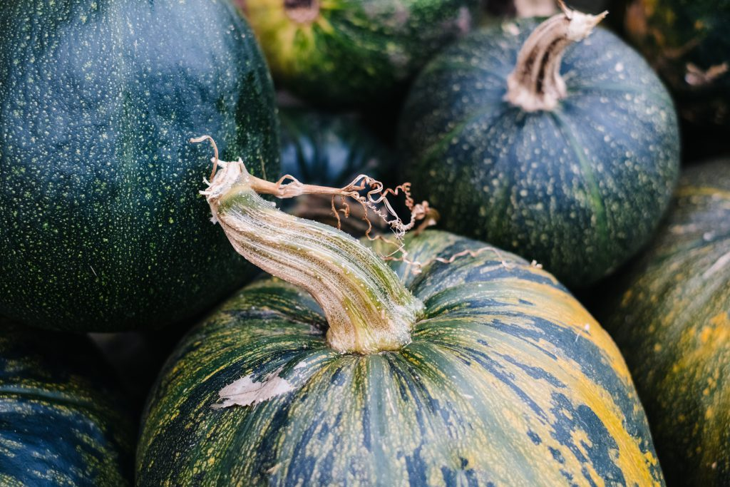 A pile of green and yellow pumpkins closeup 6 - free stock photo