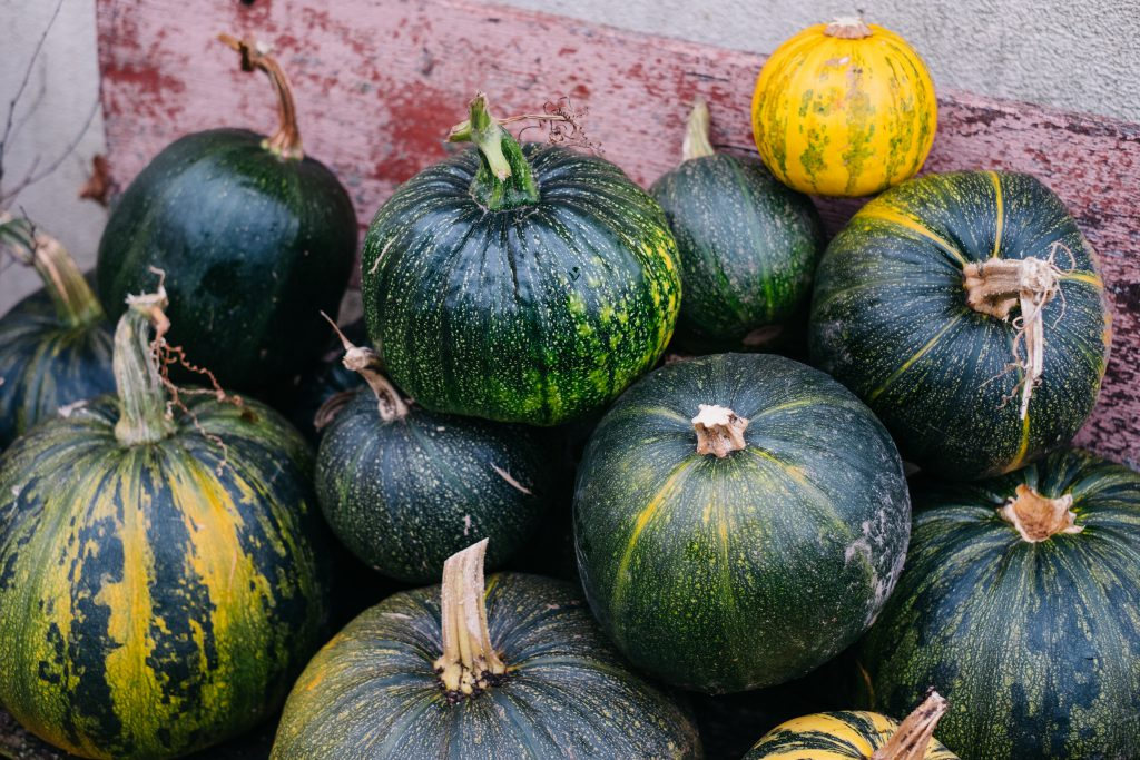 A pile of pumpkins on an old bench 5 - free stock photo