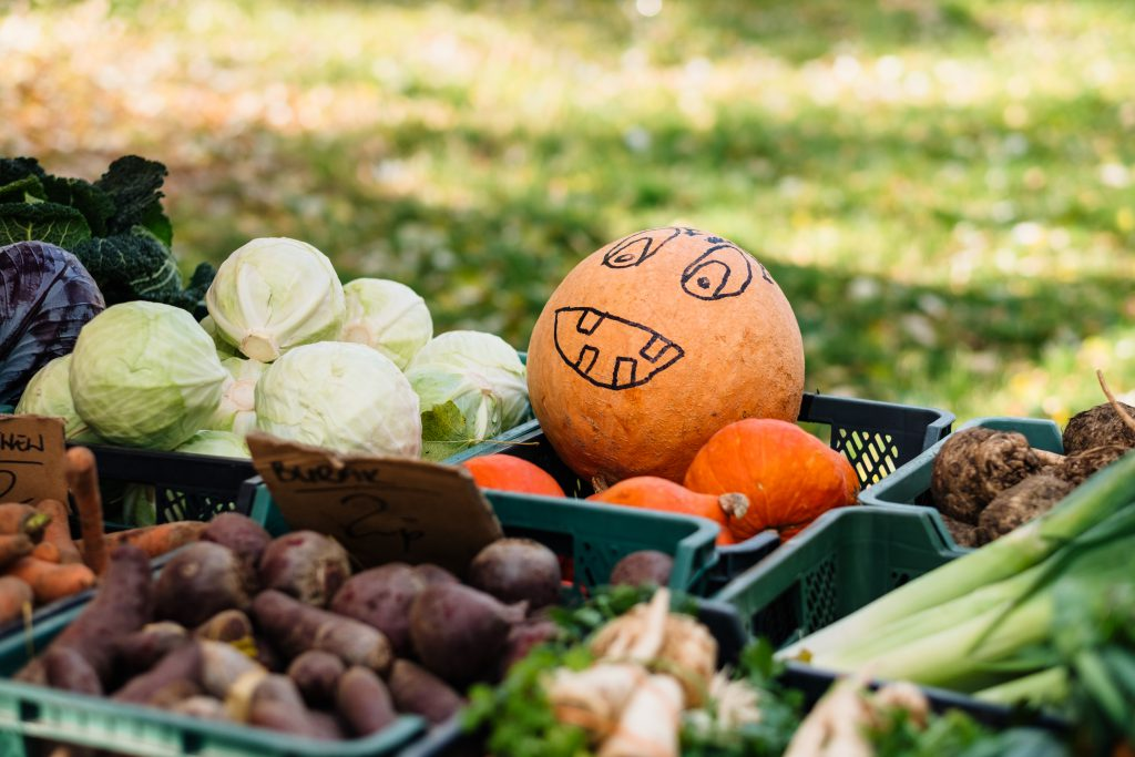Pumpkin with a drawn face at an outdoors vegetable market - free stock photo